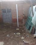 农村新厕所